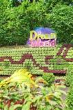 Innenansicht des Spaßparks nannte Dream World in Pathum Thani, T lizenzfreie stockfotografie