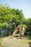 Innenansicht des Spaßparks nannte Dream World in Pathum Thani, T Lizenzfreies Stockbild