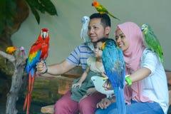 Innenansicht von Kuala Lumpur Bird Park, Malaysia Lizenzfreie Stockfotos