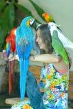 Innenansicht von Kuala Lumpur Bird Park, Malaysia Lizenzfreies Stockfoto