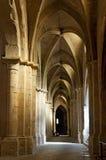 Innendecke und Spalten der alten Kathedrale Stockbild