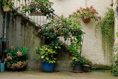 Innenhofszene bei Ammerschwihr, Frankreich Stockbild
