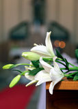 Innenraum der Kirche wird mit weißen Blumen während des Th verziert Stockfotos