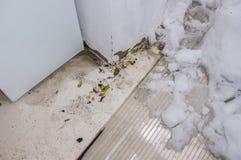 Innenraum des Hausbodens nach extremem Schneeschaden Lizenzfreie Stockbilder