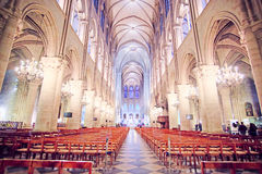 Innenraum des Notre Dame de Paris Stockbilder