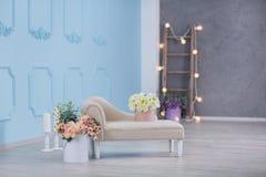 Innenraumspott herauf Foto Blaue Wand mit ledernem materiellem Diwansofa und -topf mit Betriebsblumen und -leiter Hintergrundfoto Lizenzfreies Stockbild