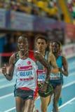 Innenschalen-Meisterschaften in Istanbul - der Türkei Lizenzfreies Stockfoto
