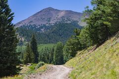 Inner Basin Trail No. 29 royalty free stock photos