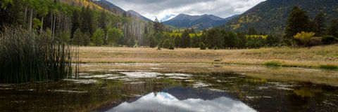 The Inner Basin Trail in Northern Arizona. Stock Photography