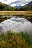 The Inner Basin Trail in Northern Arizona. Stock Images