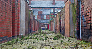 Inner city cobblestone alley. Looking down inner city cobblestone alley stock photo