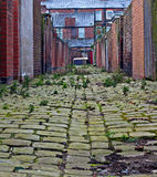Inner city cobblestone alley Stock Image