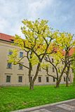 Inner courtyard of Wawel Castle in Krakow in Poland royalty free stock photography
