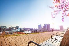 Inner Harbor at sunny day, Baltimore, MD, USA royalty free stock photo