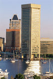Inner Harbor & Trade Center building Royalty Free Stock Image