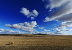 Inner Mongolia. Scene of Inner Mongolia in China Royalty Free Stock Photography