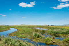 INNER MONGOLIA, CHINA - Aug 10 2015: Site of Xanadu (World Heritage site). a famous historic site in. Zhenglan Banner, Xilin Gol, Inner Mongolia, China royalty free stock photo