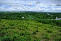 Inner Mongolia våtmarker Arkivbild