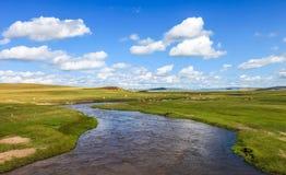 Inner- Mongoliawiese Lizenzfreies Stockfoto