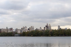 Inner New York skyline viewed from Central Park. Photo shot from inside Central Park in New York Royalty Free Stock Image