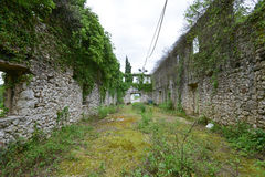 The inner space of the ruined building. The ruined building overgrown with plants near the Godinje village at Montenegro Royalty Free Stock Photos