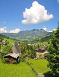 Inneralpbach,tirol. Holiday resort of inneralpbach in the holiday region of alpbach valley in tirol austria Royalty Free Stock Images