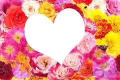 Innerblumen Stockbild