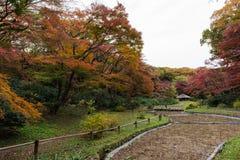 Innere Gärten bei Meiji Jingu fanden in Shibuya, Tokyo, Japan Lizenzfreie Stockfotos