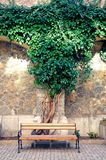 Innerer Garten von Peles-Schloss, Sinaia, Rumänien Stockfoto