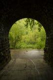 Innerer Tunnel zum Holz Lizenzfreie Stockfotografie