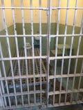 Inneres Alcatraz Stockfoto