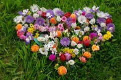 Inneres der Blumen stockfoto