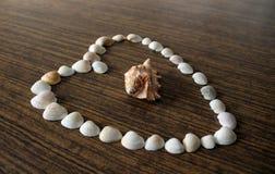 Inneres gebildet von den Shells stockbilder