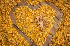Inneres geformte Blätter Lizenzfreie Stockfotos