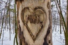 Inneres geschnitzter Baum Lizenzfreies Stockfoto