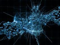 Inneres Leben des Mikro-Kosmos Stockfotos