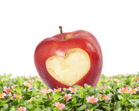 Inneres, roter Apfel Stockfotos
