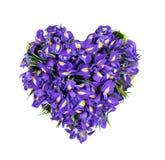 Inneres von den Blumen Stockfoto