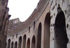 Innerhalb des Colosseum Stockfotografie