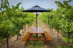 Inniskillin privates Weinprobieren Lizenzfreie Stockbilder