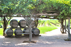Inniskillin Winery. Imaeg of barrels at Inniskillin winery, Niagara on the lake, Oh=ntario Canada stock image