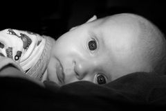 Innocence. Baby boy laying on his stomach royalty free stock image