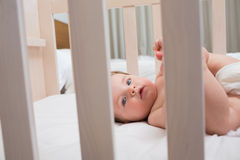 Innocent baby boy lying in crib Stock Photography