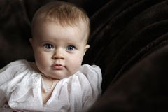 Innocent baby portrait with blue eyes. Cute infant child with blue eyes standing on the couch and looking forward stock photo