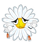 Innocent chamomile flower cartoon Royalty Free Stock Photos