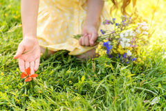 Innocent little kid touching butterfly on meadow Royalty Free Stock Photography