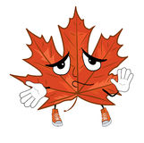 Innocent Mapple leaf cartoon Royalty Free Stock Image
