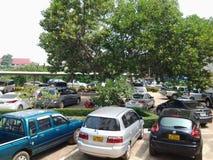 Innogreen parking samochodowy Zdjęcie Stock