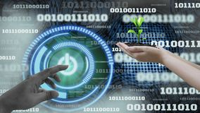 Innovation futuristic digital data binary code background technology ,with Switch on-off and hand holding seedlings, Concepts. Technology development to stock photos