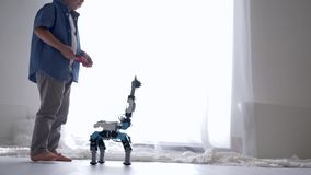 Innovation technology in childhood, cute kid boy is played by robot toy on remote control using mobile phone. In home